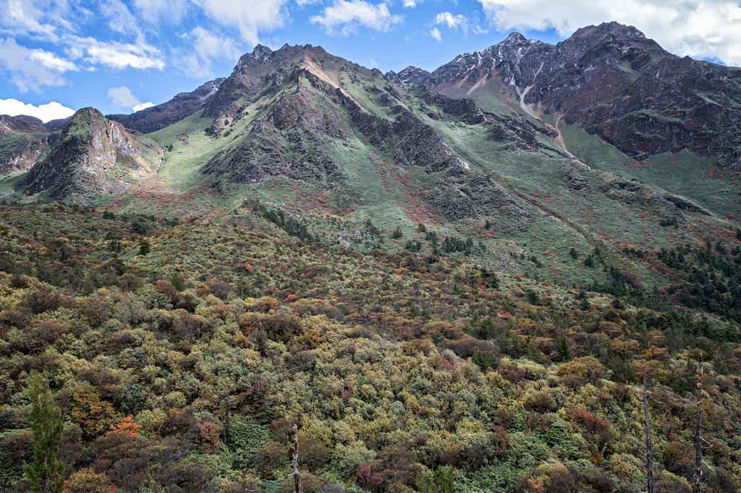 Montagnes et végétation d'automne en route pour Thrika, Bhoutan