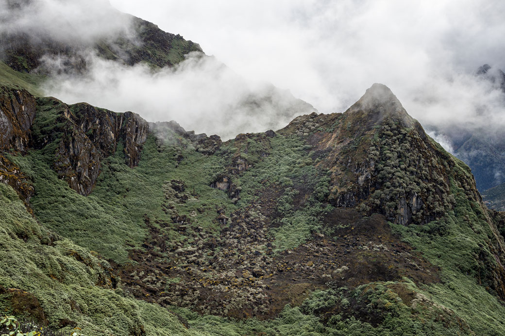 La brume se lève près de Thrika, Bhoutan