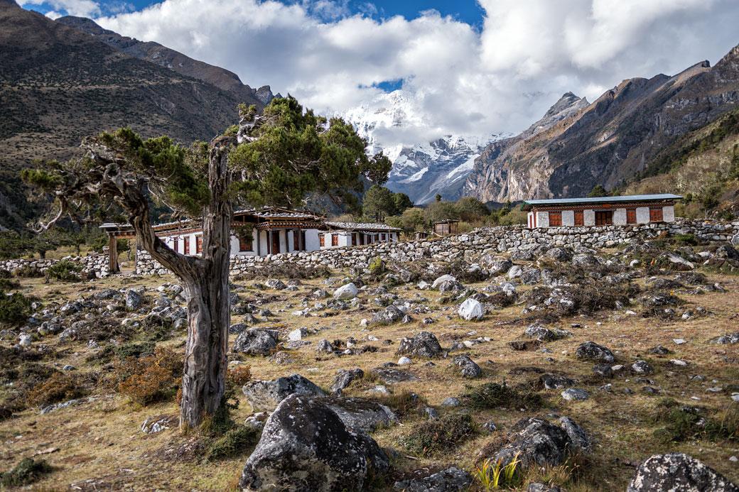 Maisons isolées entre Lhedi et Chozo, Bhoutan