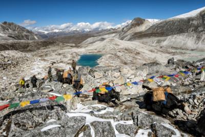 Yaks au col de Rinchen Zoe La, Bhoutan