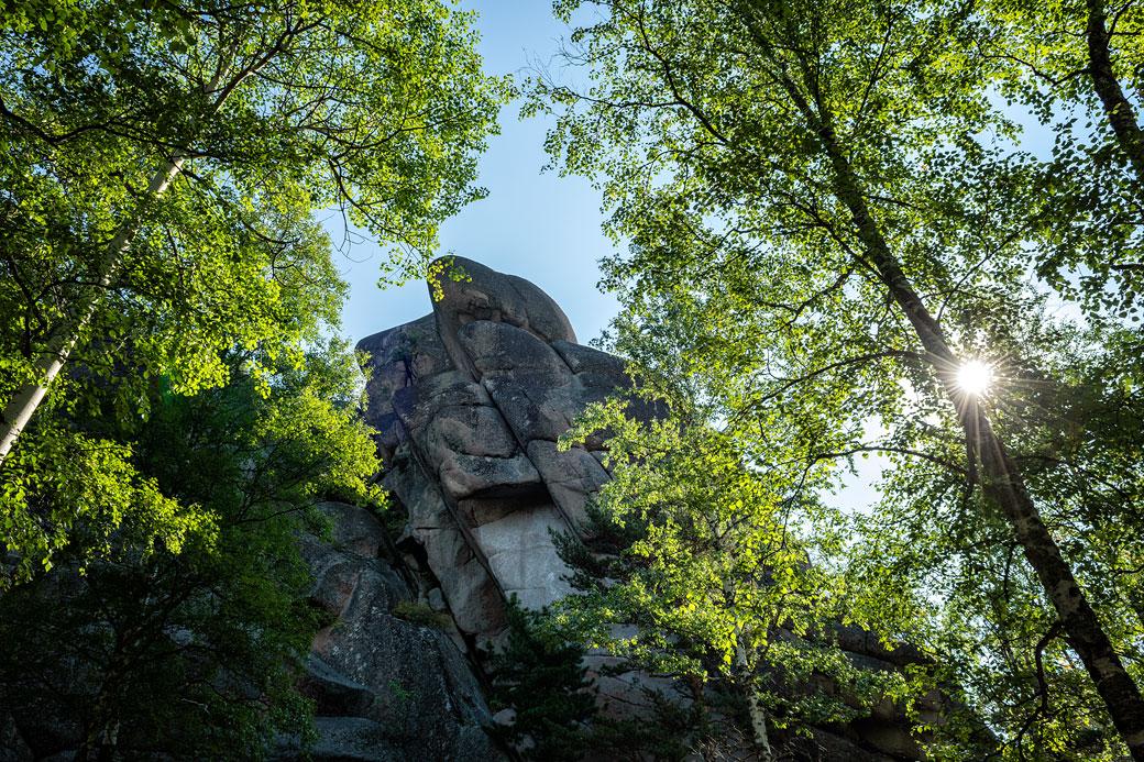 Soleil à travers les arbres au premier pilier de Stolby, Russie