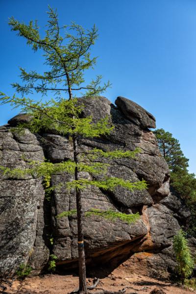 Le rocher de la porte du lion à Stolby, Russie