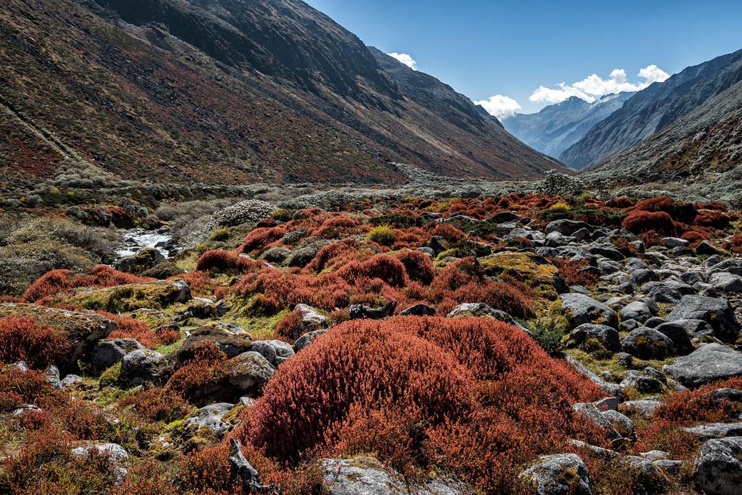 Superbe vallée colorée et isolée, Bhoutan