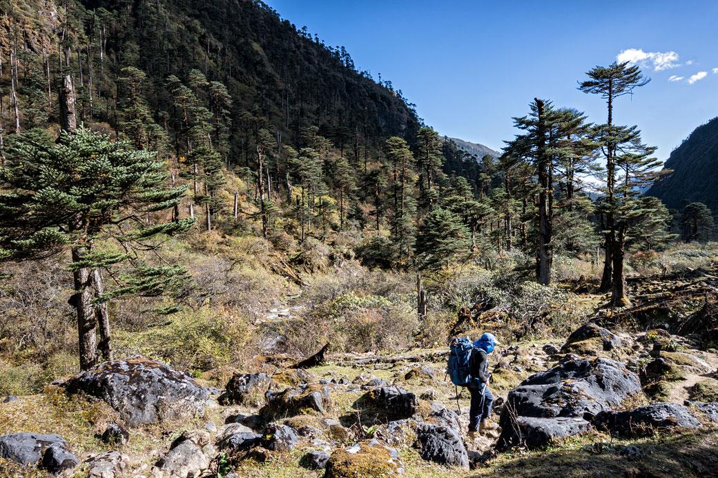 Trekkeur proche du camp de Maurothang, Bhoutan