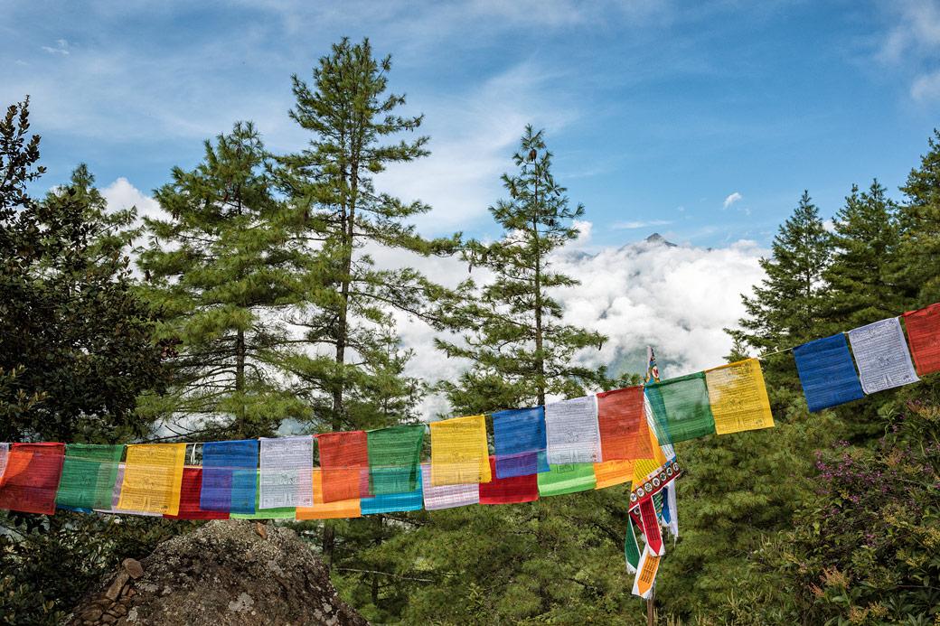 Drapeaux de prières et forêt lors de la montée à Taktshang, Bhoutan