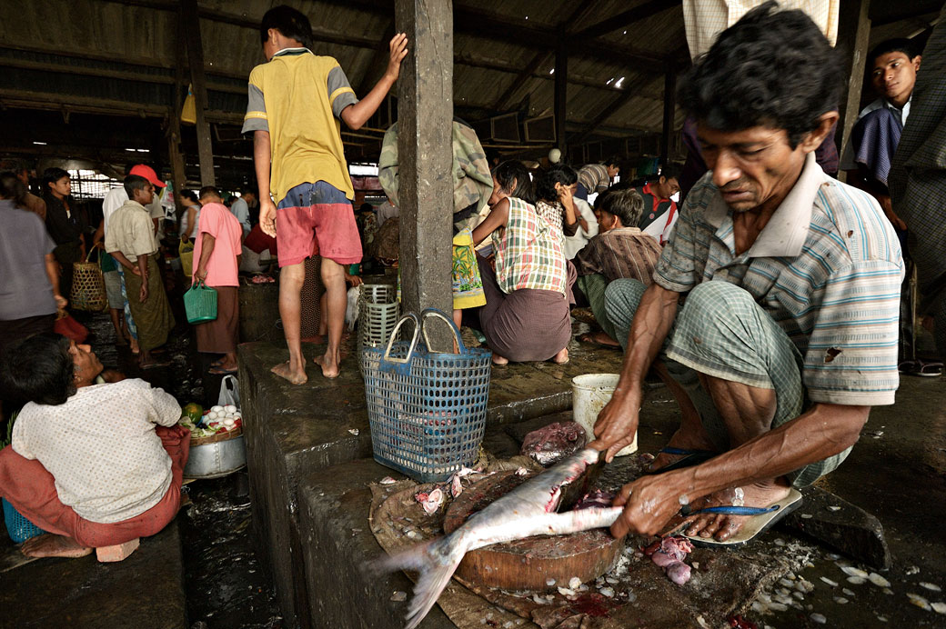 Découpe d'un poisson au marché de Sittwe, Birmanie
