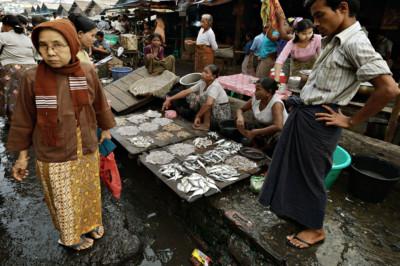 Choix de poissons au marché de Sittwe, Birmanie