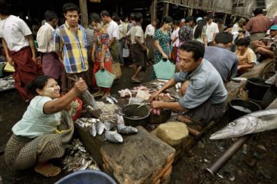 Cliente et poissonnier au marché aux poissons de Sittwe, Birmanie