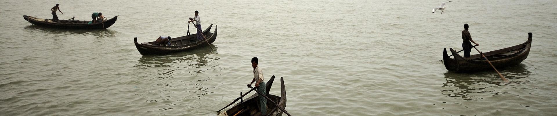 Top image marché aux poissons de Sittwe, Birmanie