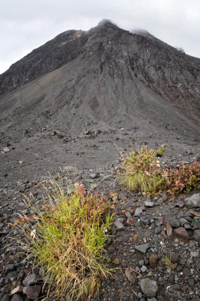 Sommet du Gunung Merapi sur l'île de Java, Indonésie