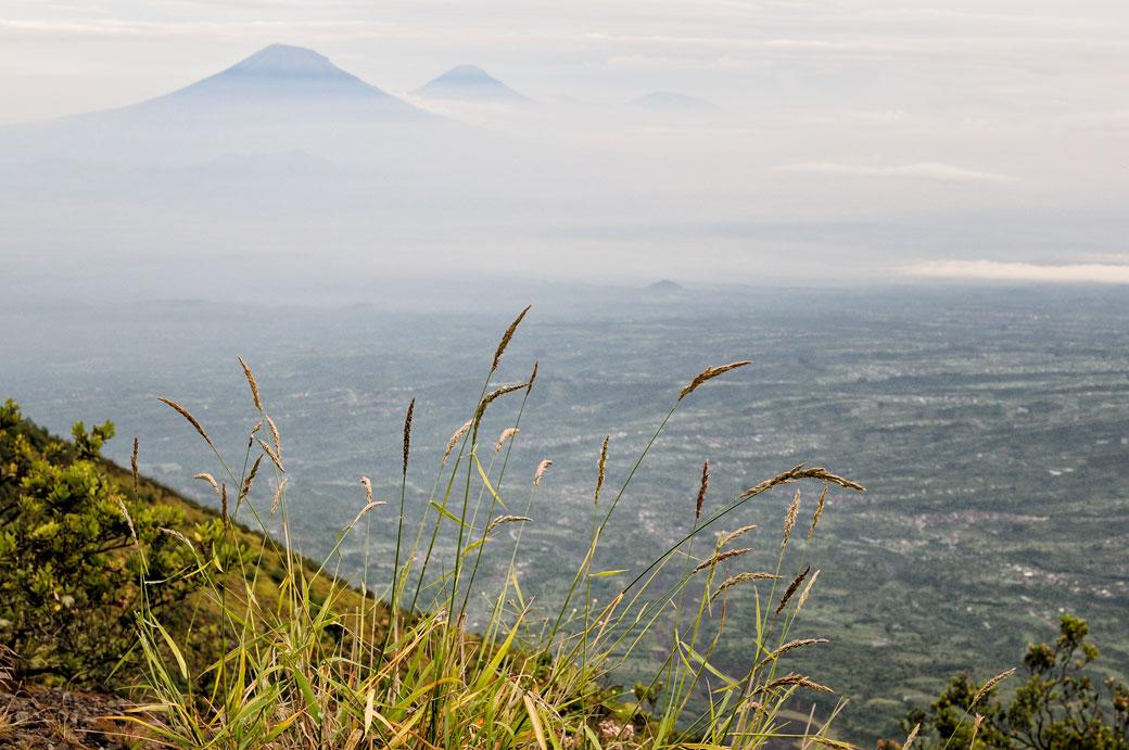 Sommets volcaniques sur l'île de Java, Indonésie