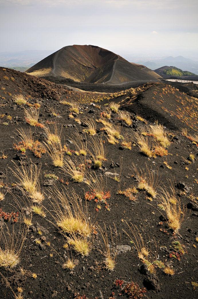 Touffes d'herbe et ancien cratère sur le Mont Etna en Sicile