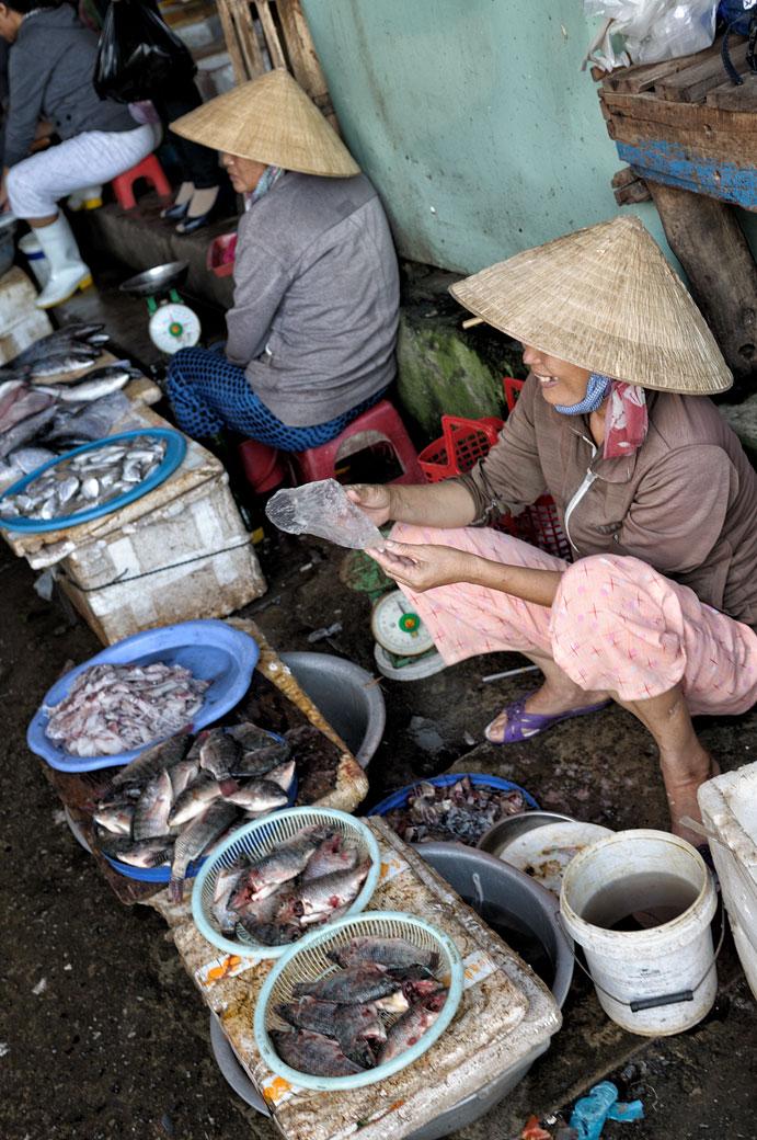Vendeuses de poissons au marché de Hoi An, Vietnam