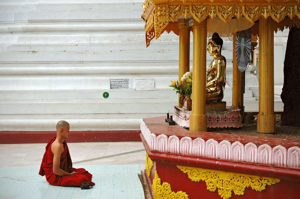 Moine en tailleur devant une statue de bouddha, Birmanie