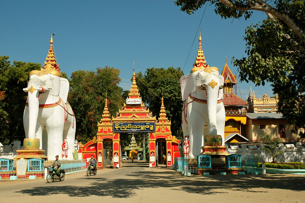 Éléphants blancs au temple de Thanboddhay, Birmanie