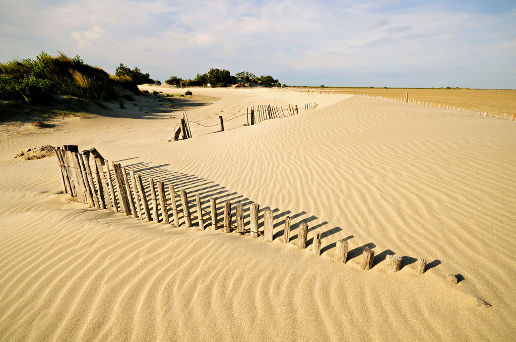 Ganivelles sur une plage de Camargue, France