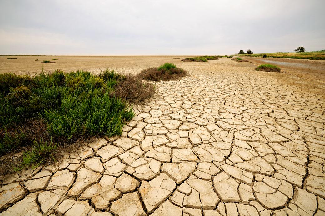 Terre craquelée et desséchée en Camargue, France