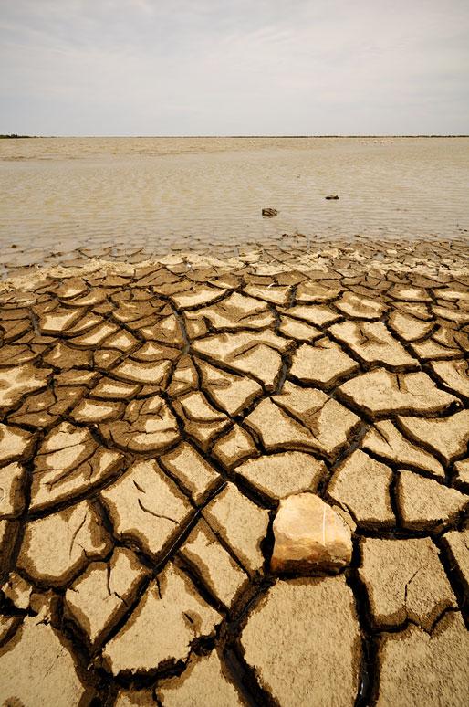 Terre desséchée au bord d'un étang de Camargue, France