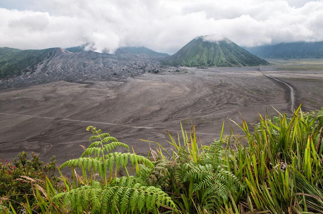 Vue des volcans Bromo et Batok depuis Cemoro Lawang, Indonésie