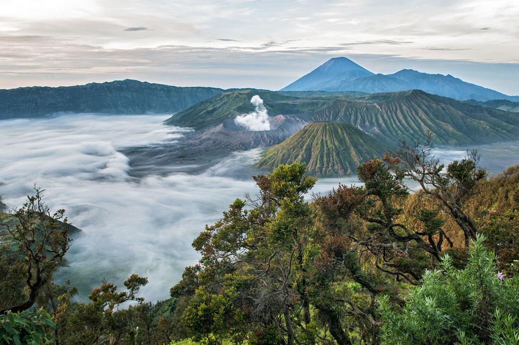 Parc national de Bromo-Tengger-Semeru au petit matin, Indonésie