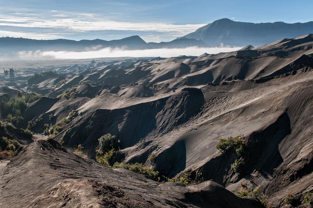 Terre volcanique au pied du volcan Bromo, Indonésie