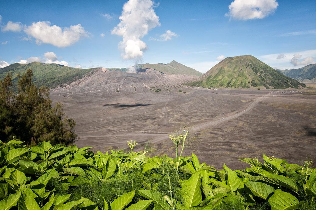 Volcans Bromo et Batok dans la caldeira de Tengger, Indonésie