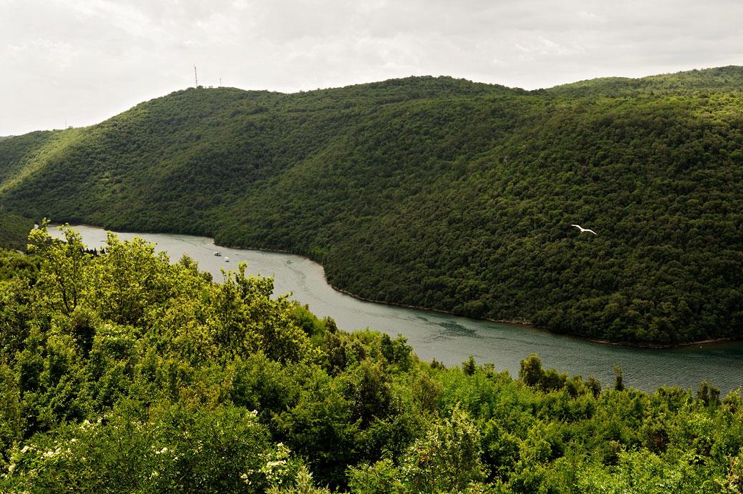 Fjord de Lim en Istrie, Croatie