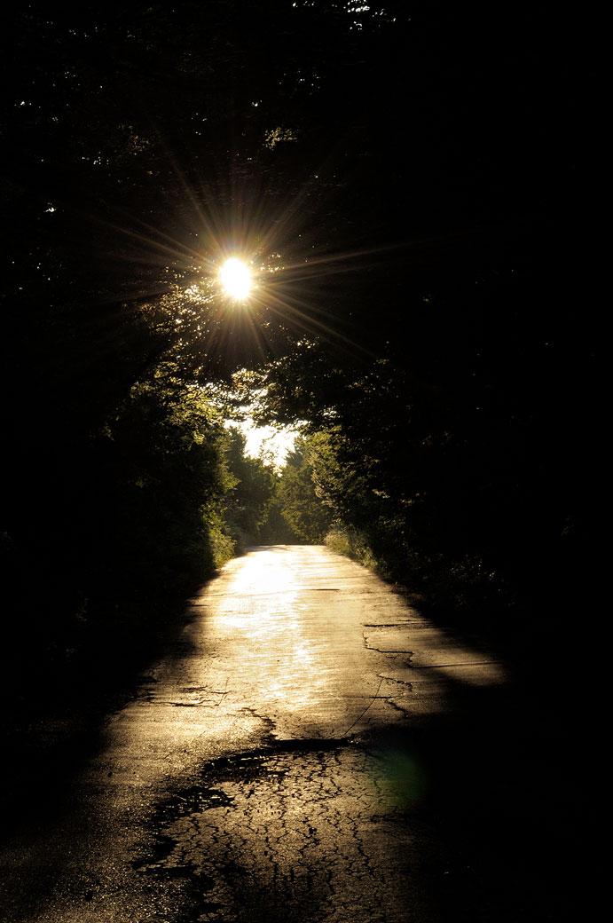 Route et soleil dans une forêt, Croatie