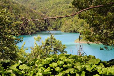 Lac entouré par la forêt, Croatie