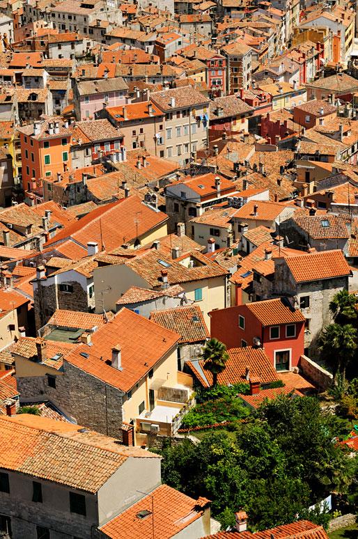 Verdure et toits de Rovinj en Istrie, Croatie