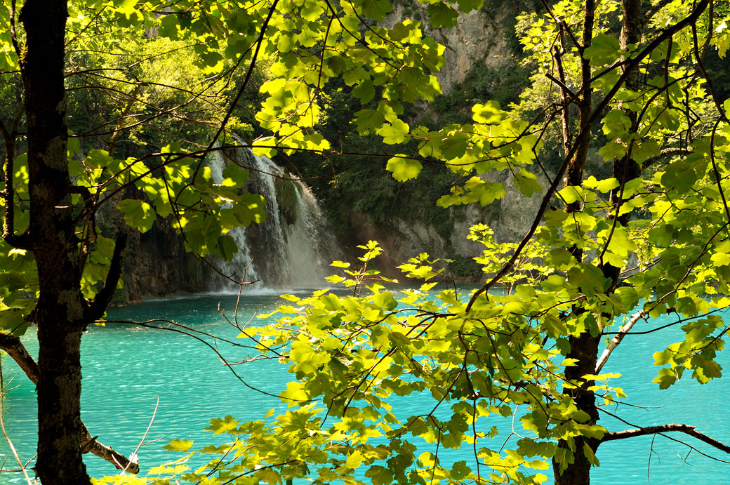 Chute d'eau à travers le feuillage à Plitvice, Croatie