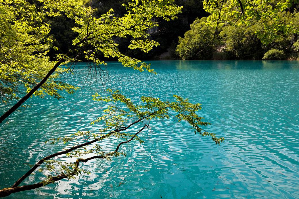 Lac turquoise dans le parc national de Plitvice, Croatie