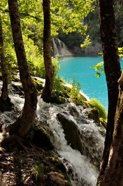 Cascades dans les bois de Plitvice, Croatie