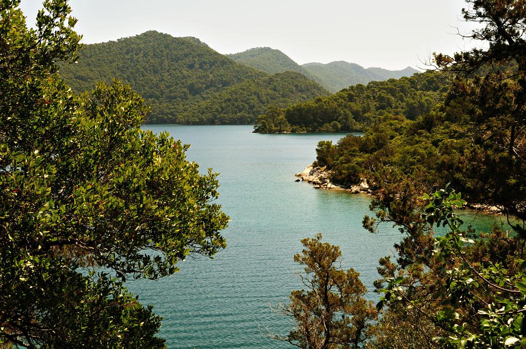 Forêt dense et lac salé à Mljet, Croatie