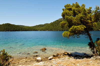 Petite plage au bord du grand lac salé à Mljet, Croatie