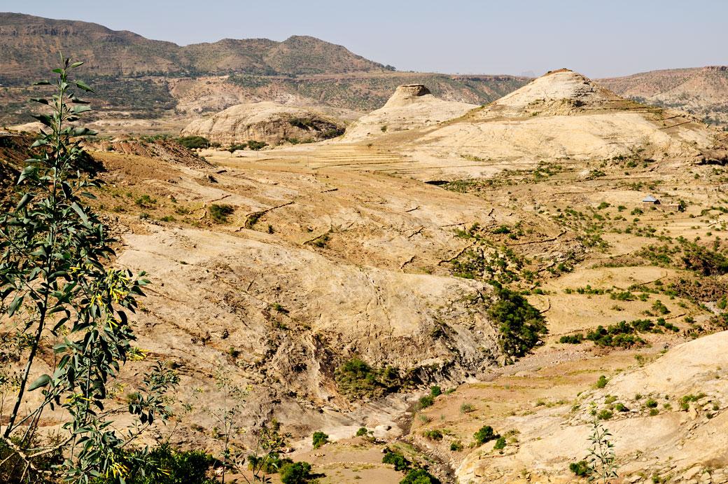 Paysage des hauts plateaux du Tigray, Ethiopie