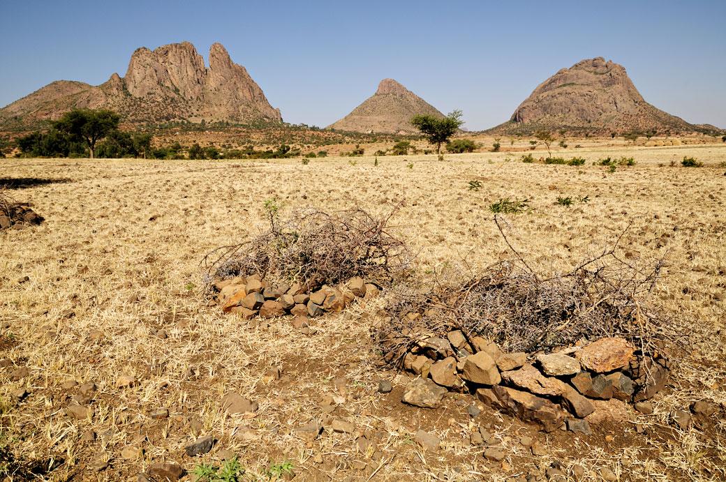 Montagnes des hauts plateaux de la région du Tigray, Ethiopie