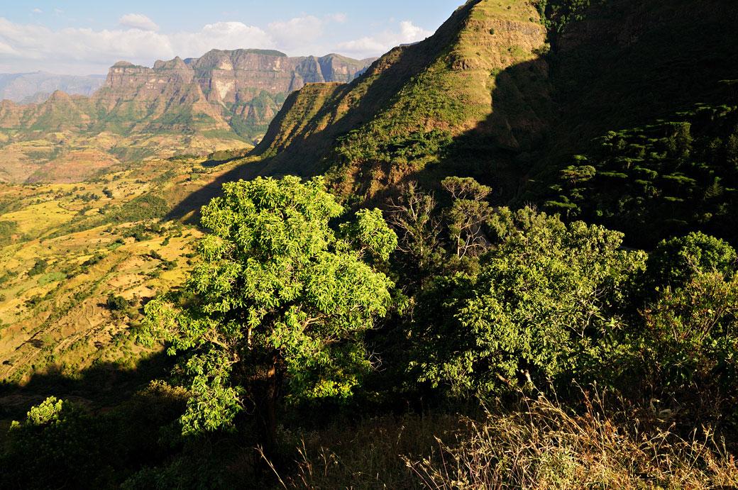 Contrefort des montagnes du Simien, Ethiopie