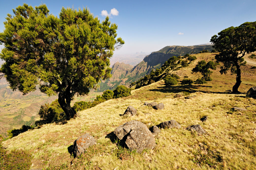 Paysage des montagnes du Simien, Ethiopie