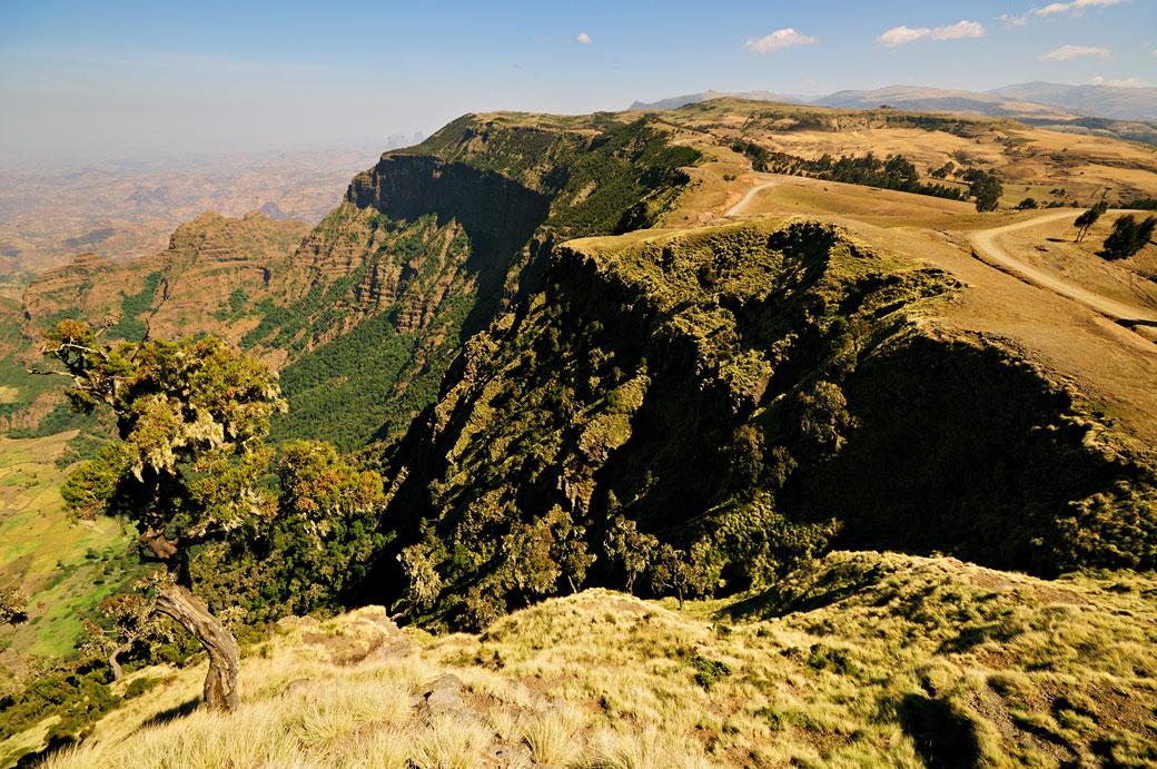 Plateau des montagnes du Simien, Ethiopie
