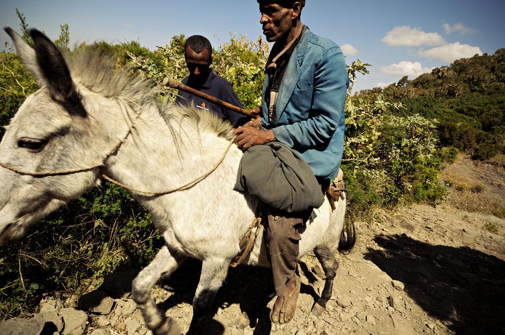 Homme à cheval dans le massif du Simien, Ethiopie