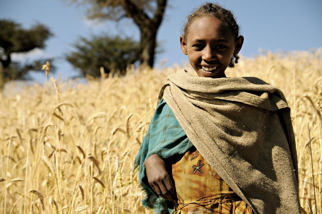 Jeune fille dans un champ de blé, Ethiopie
