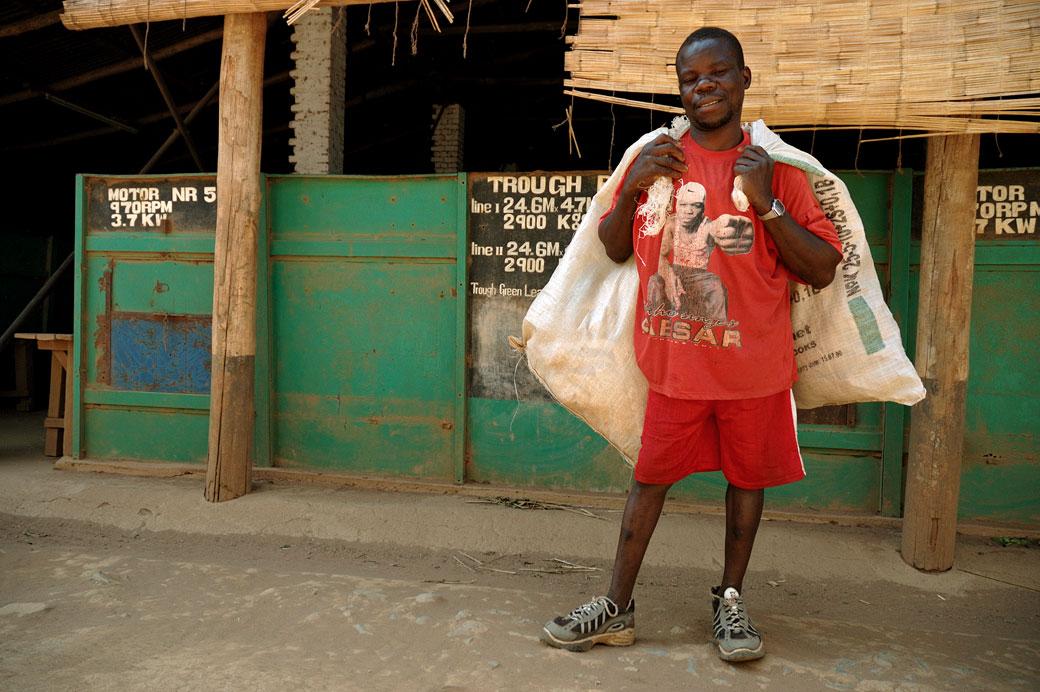 Homme qui porte des sacs dans l'usine de thé à Thyolo, Malawi