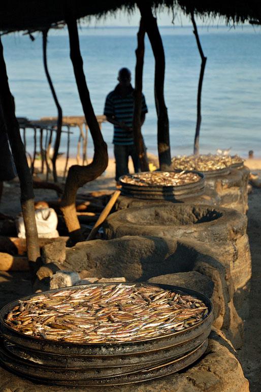 Séchage de poissons à Cape Maclear au bord du lac Malawi