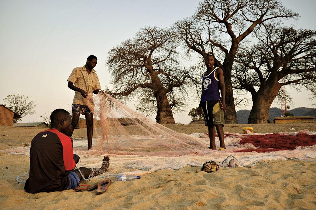 Pêcheurs et baobabs sur la plage de Cape Maclear, Malawi