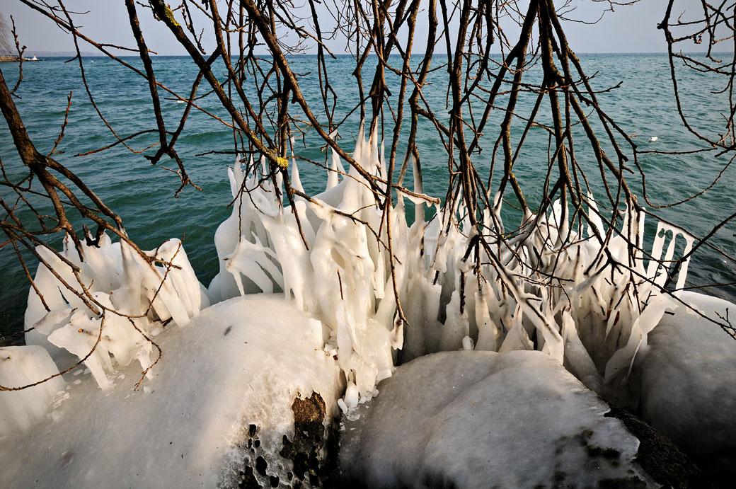 Branches pris dans la glace au bord du lac Léman, Suisse
