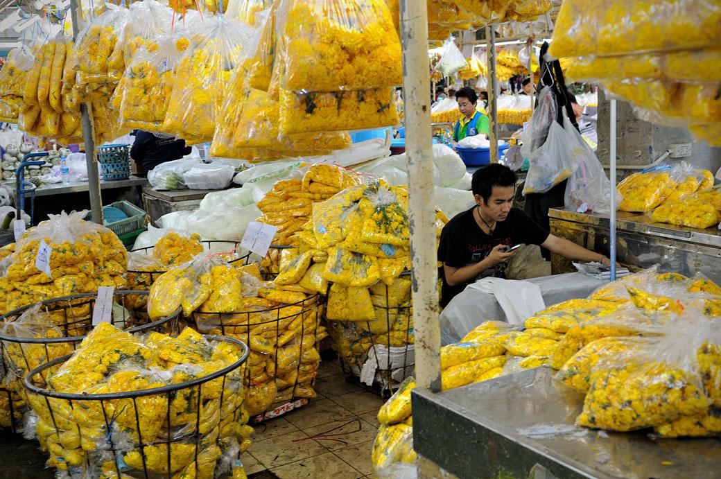 Fleurs jaunes au Pak Khlong Talat de Bangkok, Thaïlande