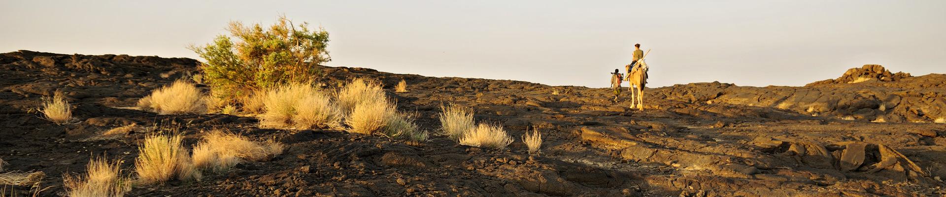 Top image sur le volcan Erta Ale, Ethiopie