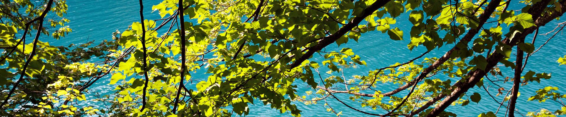 Top image lac de Plitvice