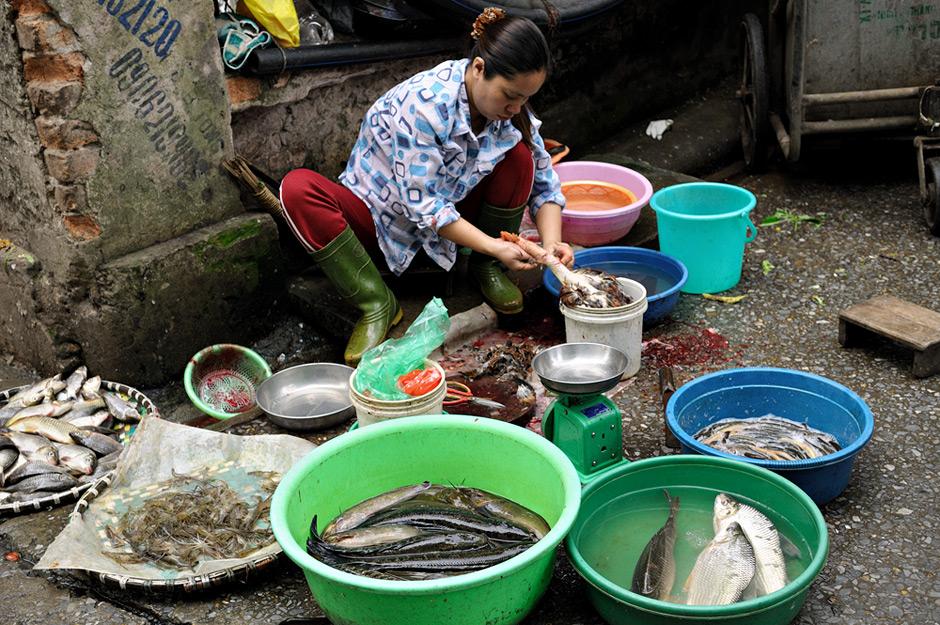 Femme qui déplume un poulet au marché de Hanoi, Vietnam